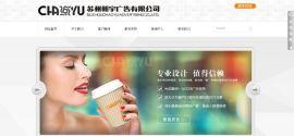 苏州朝宇广告专业的网站设计及网站优化服务