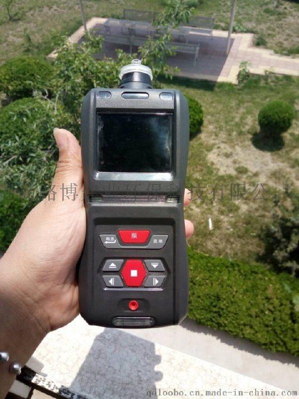青岛路博LB-MS5X硫化氢检测仪