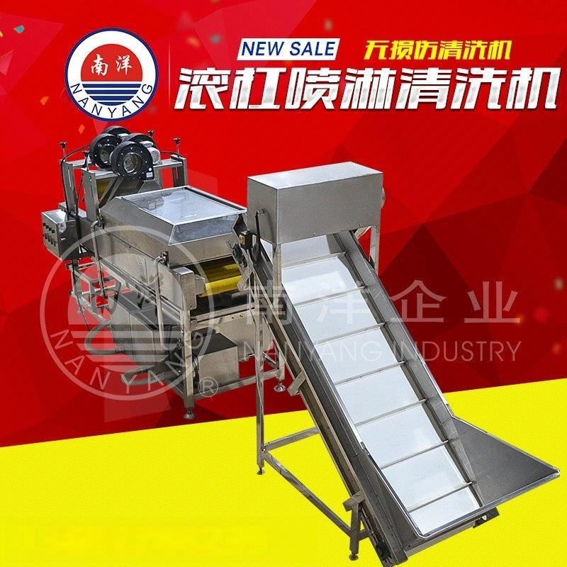 广州南洋滚杠式喷淋无损伤蔬果清洗机