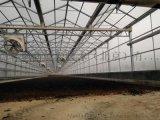 太阳能污泥干化温室系统工程