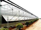 智慧大棚、pc板溫室、溫室