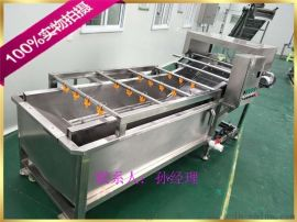 水黄瓜清洗机  设备 黄瓜气泡清洗机厂家