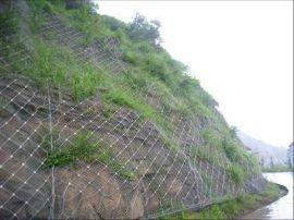 四川仲达专业生产GPS1,2GAR1.2主动防护网