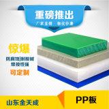 PP板 白色 10mm厂家生产定制 纯粒料聚丙烯板