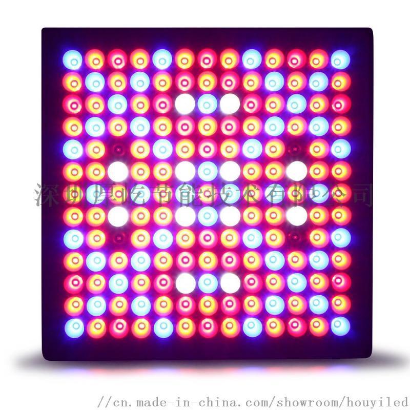 温室种植补光灯外置面板灯系列大功率LED植物生长灯