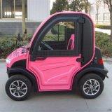 2座小型電動汽車 湖南電動汽車