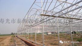 潍坊寿光泰源农业薄膜温室大棚骨架