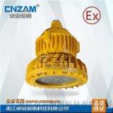 卓安照明 专业生产LED免维护防爆灯 ZBD102-1