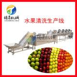 電動多功能水果清洗線 芒果清洗機 風乾機