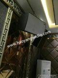 DIASE--RM12,KTV音箱 舞台音箱, 广州音箱厂家