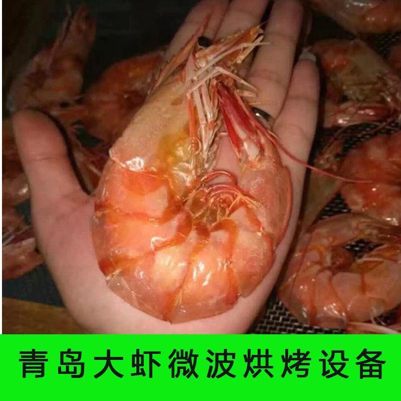 鲜虾微波干燥机 打虾粉低含水率烘干设备 海虾微波脱水技术