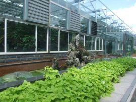 河南温室大棚建造 河南玻璃温室公司-歌珊温室工程公司