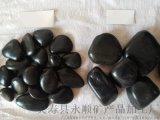 錦州精品黑色鵝卵石   永順優質黑色鵝卵石直銷