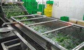 蔬菜清洗机 菌类药材毛辊清洗机 水果毛刷清洗设备