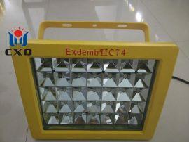 防爆免维护节能照明灯CCD97-F70b