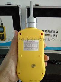 青岛路博LB-BZ泵吸式硫化氢一氧化碳检测仪