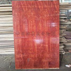 广东建筑模板质量可靠全整芯多层板不开胶