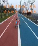 武漢透水地坪材料,彩色透水路面鋪裝