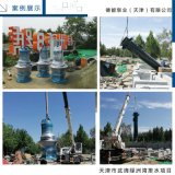 潜水轴流泵德能泵业产品优势