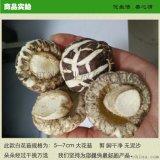 花菇 5-7大白花菇随州特产干香菇出口级品质香菇干货产地大量供应