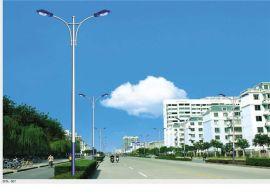 LED路灯灯杆 高品质 低价格 直销价格  厂家批发  质保5年
