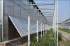 山東五合陽光板溫室大棚