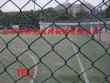 動物園勾花網 包塑鐵絲網圍欄 綠化勾花網