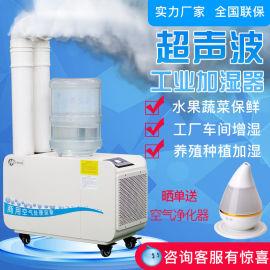 超声波工业加湿器大雾量加湿蔬菜保鲜加湿器