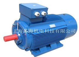 **效稀土永磁电机 (TYCX355M1-10-110KW)