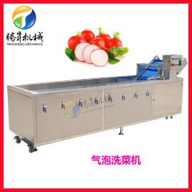 大型洗    苹果清洗机 气泡臭氧清洗机