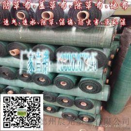 聚丙烯PP防草布 抗紫外线塑料编织土工布