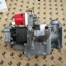 康明斯NTA855-C400燃油泵4951495