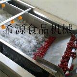 XY-S400聖女果清洗機 供應蘋果清洗機