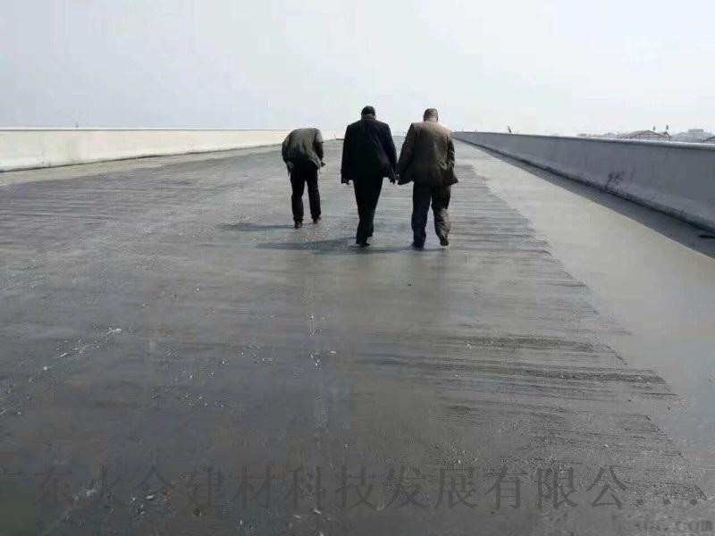 耐博仕  -1500桥面防水涂料 透明防水