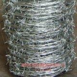定州金冠 供应热镀锌刺绳 双股刺绳 镀锌刺丝 批发 厂家直销