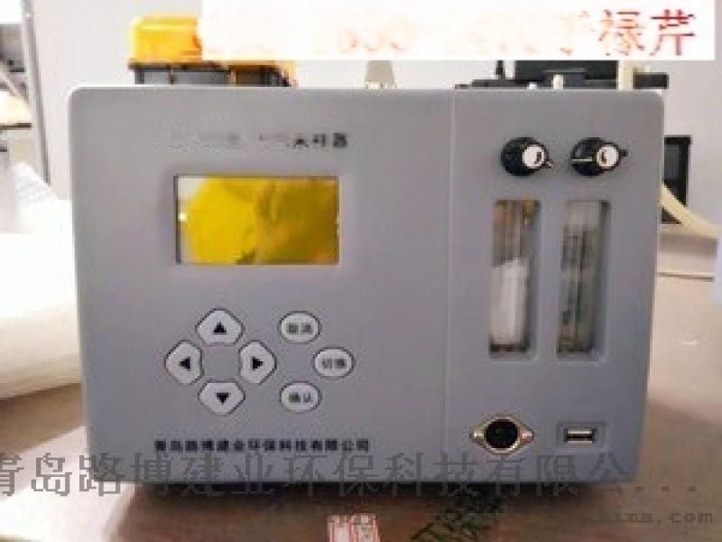 LB-6E型大气采样器双路转子