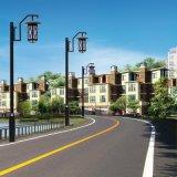 广安仿古庭院灯,广安中式景观灯,蓬安路灯厂