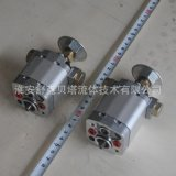 CB-E0.5/1.5-ST系列雙向齒輪泵帶濾網