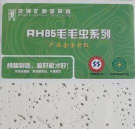 龙牌毛毛虫600x600矿棉板12厚A级防火吸音板