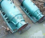 應急排水移動式潛水混流泵