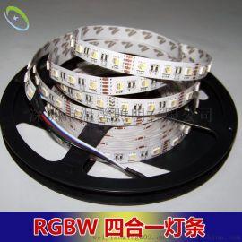 新款5050LED灯带四芯灯珠RGBW四合一七彩白光调光调色温灯条 高亮