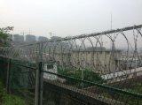 鋼板網柵欄+0.5m刺絲滾籠