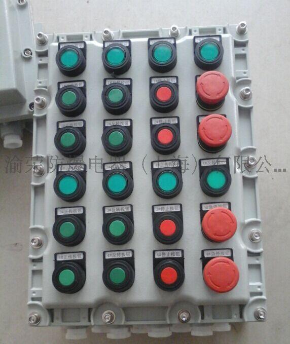 渝榮防爆BXK58(DIP)系列粉塵防爆控制箱