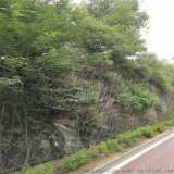 生態邊坡防護網@生態綠化專用網@綠化主動防護網