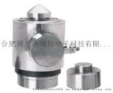 特迪亞Tedea汽車衡感測器BP-6稱重感測器