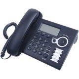 雙口網路電話(LIPP-208)