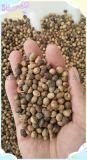 常年出售肥料大豆