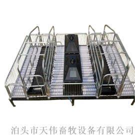 母猪产床 母猪产床怎么安装 双体猪用产床