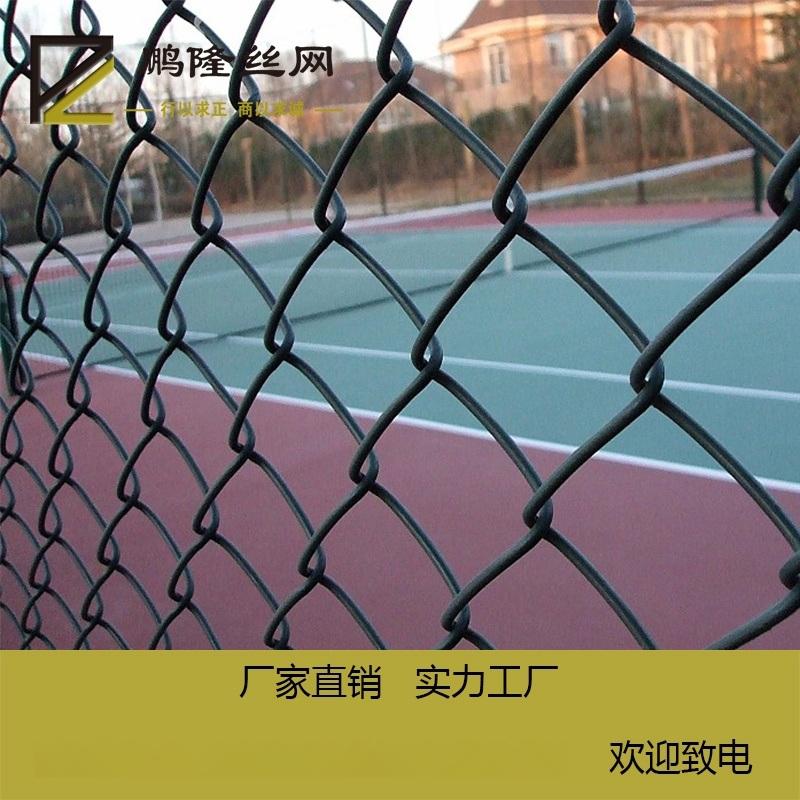 鹏隆供应 球场围网 体育场护栏勾花网 体育场围网