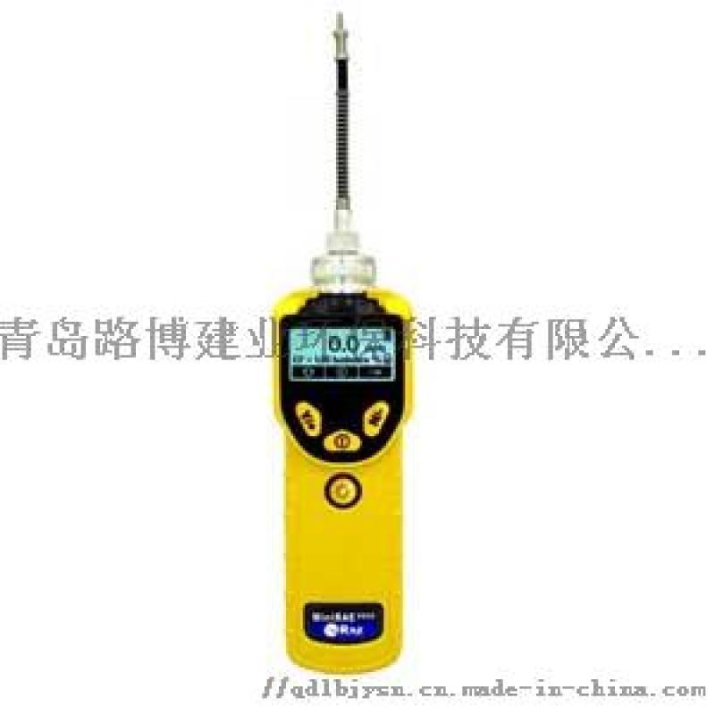 MiniRAE300 VOC检测仪PGM-7320